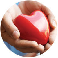 Healthy Heart is in Your Hands