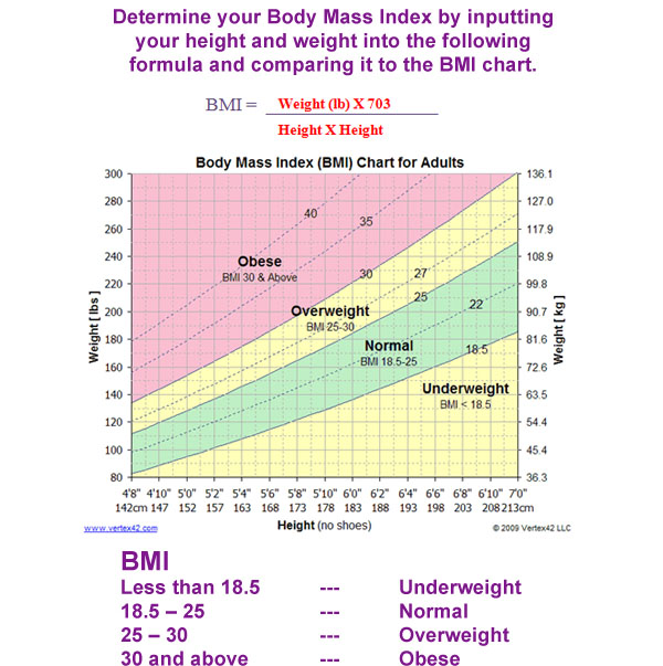 Calculate Your Bmi Heartscan Services